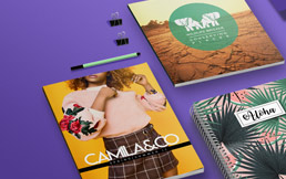 Printed brochures, booklets and books